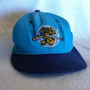 Official Charleston Riverdogs Team Baseball Cap